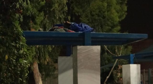 שינה על הסככות המתכתיות שמצלות על ספספלי גינת לווינסקי